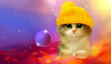 Bubbly kitty  HD wallpaper