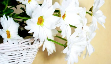 Flowers in wicker basket HD wallpaper