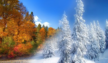 Winter Herbst  HD wallpaper