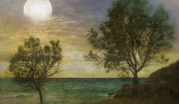 Moonlit shore HD wallpaper