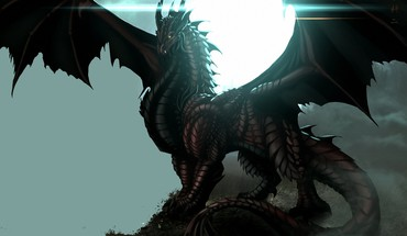Je suis le roi dragon  HD wallpaper