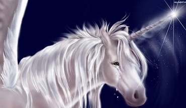 Unicorn tears HD wallpaper