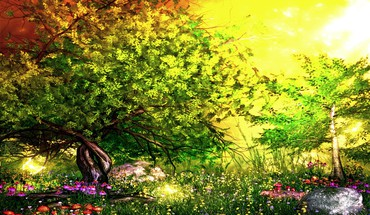 Spring forest  HD wallpaper