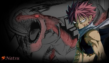 Fairy tail  HD wallpaper