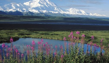 Alaska Parc national de Mount  HD wallpaper