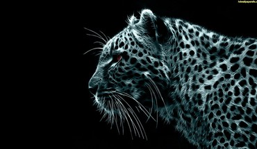 Leopard light HD wallpaper