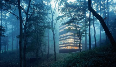 Buildings forests morning HD wallpaper