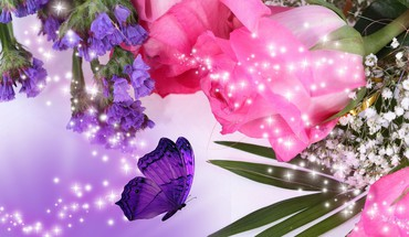 Pink roses and purple flowers HD wallpaper