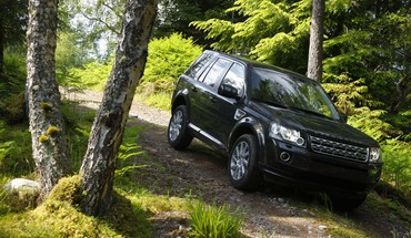 forêts VUS Freelander jeep land rover  HD wallpaper