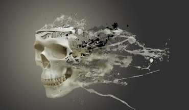 White skull HD wallpaper