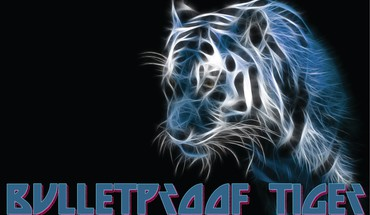 tigre Bulletproof  HD wallpaper