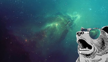 Bears outer space sunglasses HD wallpaper