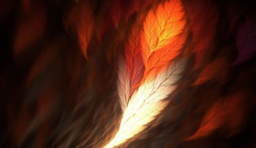Feather art HD wallpaper