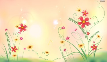 Flowers in the meadow HD wallpaper