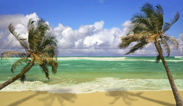 Wind tropical beach HD wallpaper