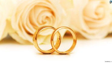 Weddings rose HD wallpaper