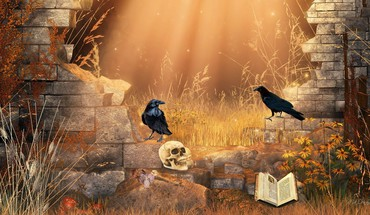 Mystical ravens HD wallpaper