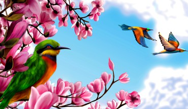 Birds in paradise HD wallpaper