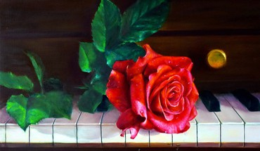 Piano rose  HD wallpaper