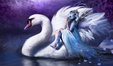 Swan riding HD wallpaper