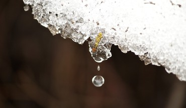Ice macro melt snow water drops HD wallpaper