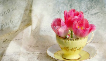 Cup of tulips HD wallpaper