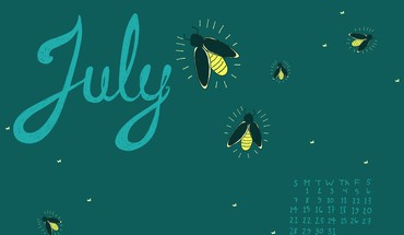 July fireflies HD wallpaper