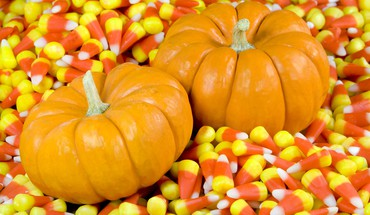 Candy corn pumpkins HD wallpaper