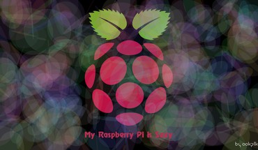 Rasberries raspberry pi HD wallpaper