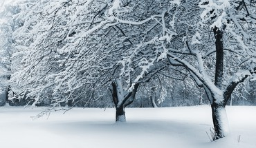 Cleveland Ohio neige tombée  HD wallpaper