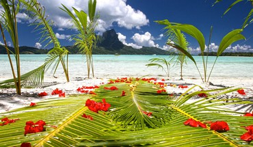 Preparations on beach by blue lagoon polynesia HD wallpaper