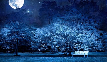 Moon bench blue forests garden HD wallpaper