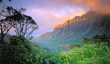 Hawaii nature HD wallpaper
