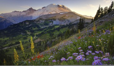Sourdough trail by mount rainier at sunset HD wallpaper
