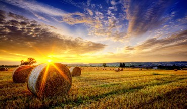 Golden landscape HD wallpaper