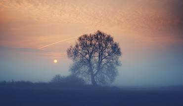 Clouds landscapes nature sun trees dawn fog HD wallpaper