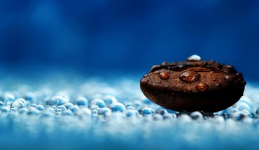 Coffee bean  HD wallpaper