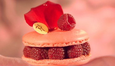 Macaron pierre hermé raspberries sweets (candies) HD wallpaper