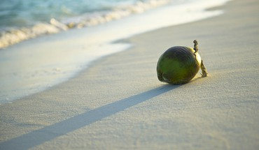 Beach fruits HD wallpaper