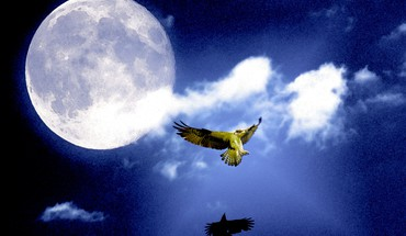 Osprey from moon HD wallpaper