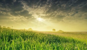 Fields land landscapes nature sunset HD wallpaper