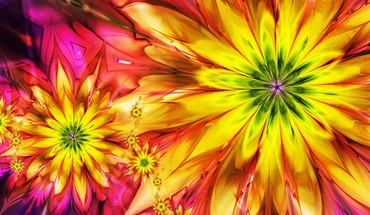 Abstract multicolor flowers fractals HD wallpaper