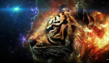 Flaming tiger head HD wallpaper