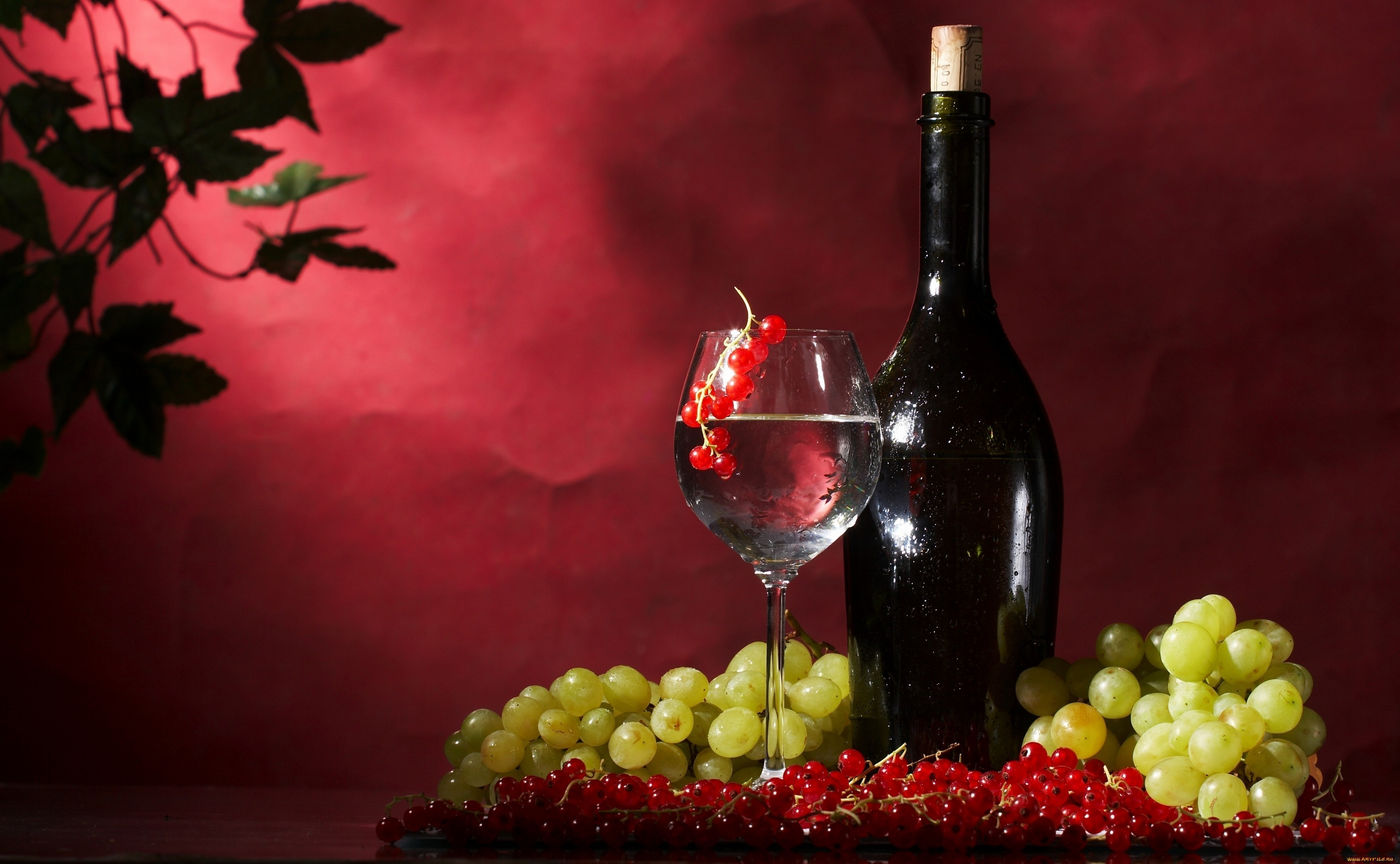 grapes wine hd wallpapers - photo #7