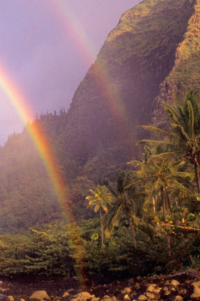 Hawaii Rainbow Wallpaper