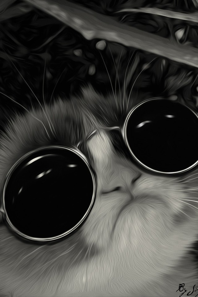 https://cdn.allwallpaper.in/wallpapers/640x960/19/sunglasses-john-lennon-post-awsome-grumpy-cat-640x960-wallpaper.jpg