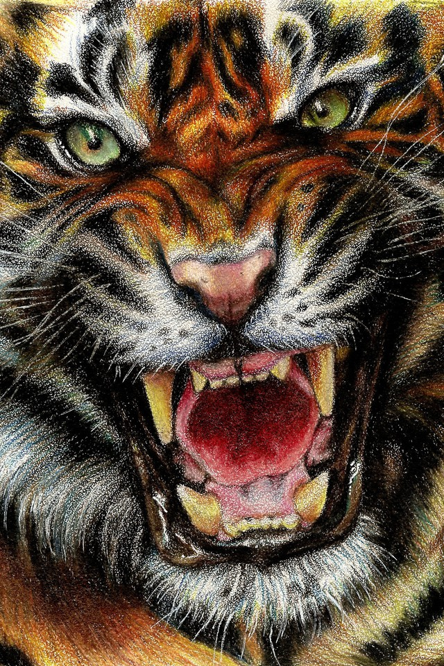 Animals digital art drawings paintings tigers wallpaper wallpaper resolutions thecheapjerseys Image collections