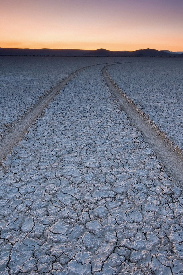 a background information about deserts Gobi desert facts:-gobi means waterless place - it is approximately 500,000 square miles - only 5% is sand dunes - contains 5 disctinct ecoregions.
