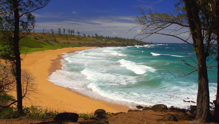 Donkey beach hawaii wallpaper