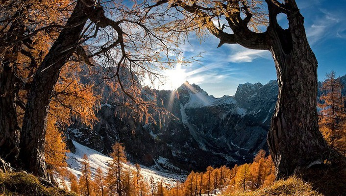 Mountains snow sun trees summer spring wallpaper